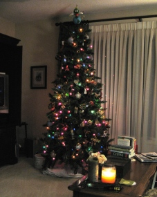 Christmas at Halteman Villas.