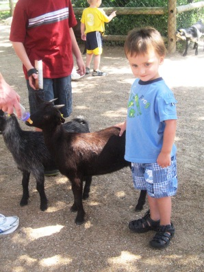 Joseph got in the goat feeding act too.