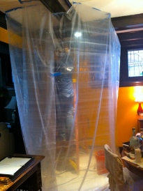 My dining room is draped for surgery.