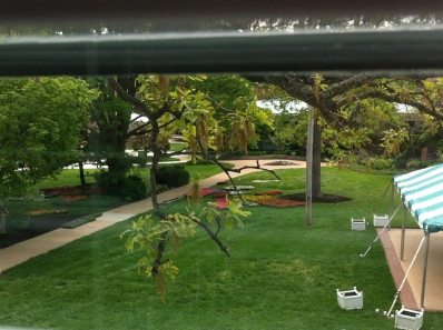 From my office window: I love campus even more when the planting starts.