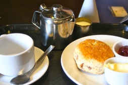 Cream tea, with a scone, jam, and clotted cream.