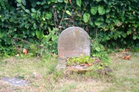 Elgar's last two dogs are buried at his birthplace. They both outlived him.