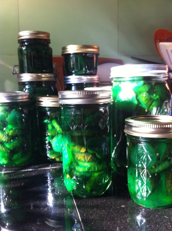 pickles.13.8