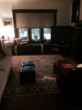 The living room, with a new rug.
