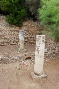 Old Roman cistern. Nature always wins.