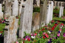 Churchyard.