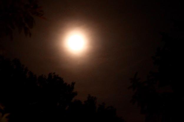 full-moon-1