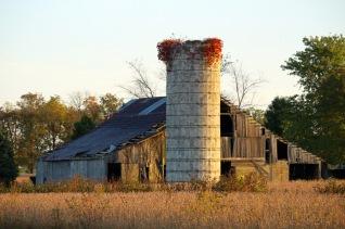 Farm Scene, Indiana.