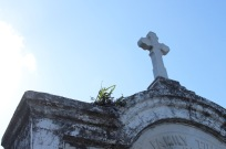 st-joe-cemetery - 4