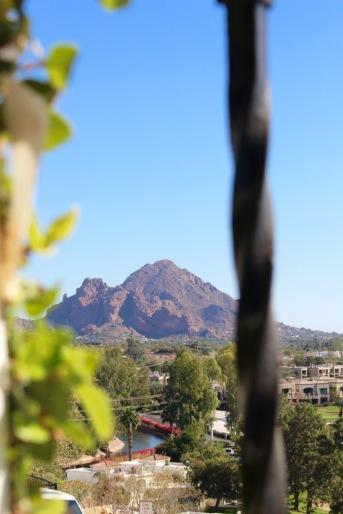 Camelback Mountain from the day room.