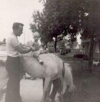 jc-infant-on-pony