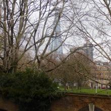 The Shard peeks through the leafless trees.
