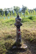 Because even in the hills, one needs a fire hydrant.