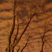 nighttime - 2