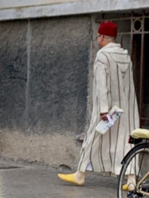 A well-dressed Moroccan man. Fez, djellaba, and leather sandals. Yellow is considered quite right.