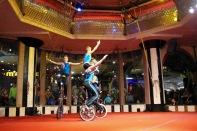 unicycle - 11
