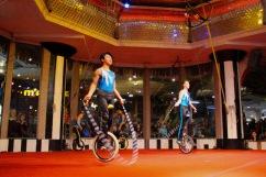 unicycle - 9